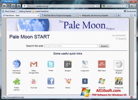 Screenshot Pale Moon Windows 10