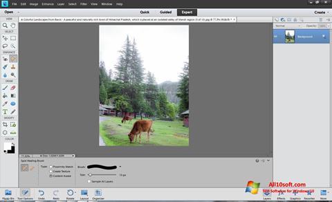 Screenshot Photoshop Elements Windows 10